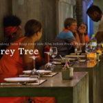 シェムリアップのダントツ人気レストラン「チャンレイツリー」に行ってみた。