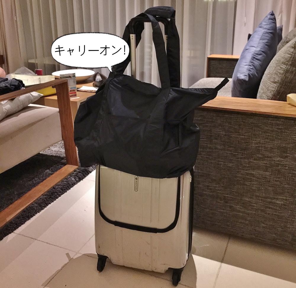 海外旅行用スーツケース おすすめバッグ
