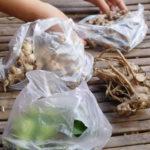 【まとめ】カンボジア料理でよく使われる調味料、食材